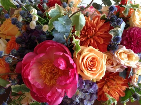 Flowers from Dandelion Ranch